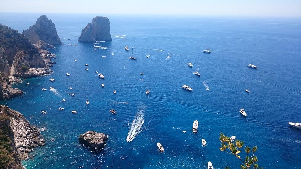 avvistare la lucertola blu - la bella Capri