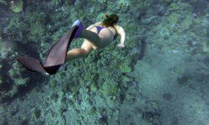 Bando per il turismo - Ragazza In Immersione che nuota