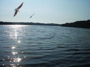 Il Lago Di Paola - Riflessi sul lago di Paola