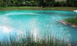 La scoperta delle sorgenti pontine - Circeo L'incanto Della Maga Circe attraverso il sogno del lago