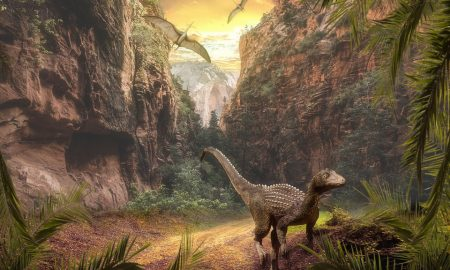 I dinosauri di Sezze - Dinosauri nel loro ambiente