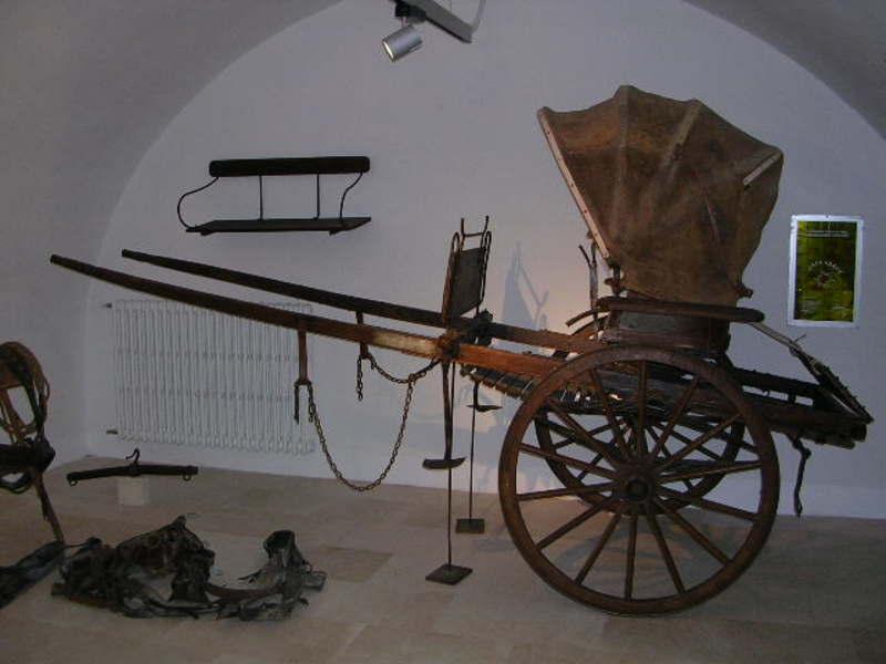 Borgo Di Presicce - una sala del museo
