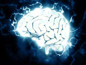 La Settimana Del Cervello - foto di un cervello