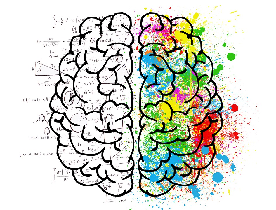 La Settimana Del Cervello - disegno di un cervello