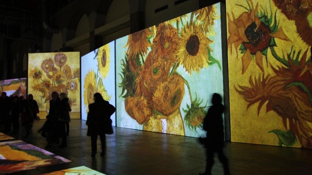 mostra Van Gogh - foto della mostra