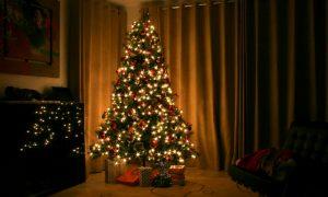 Vigilia Di Natale In Salento