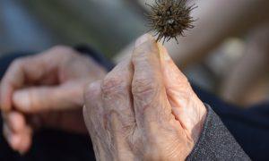 Anziani E Coronavirus