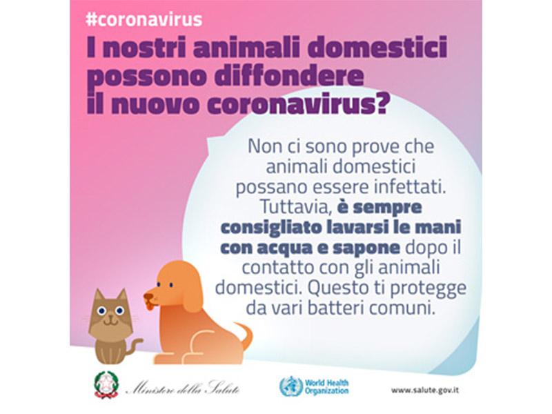 Coronavirus Fake News Animali Domestici