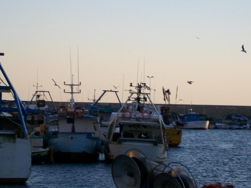 Gallipoli Imbarcazioni