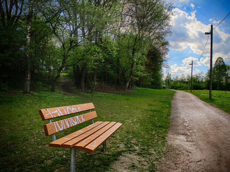 Un parco immerso nel verde