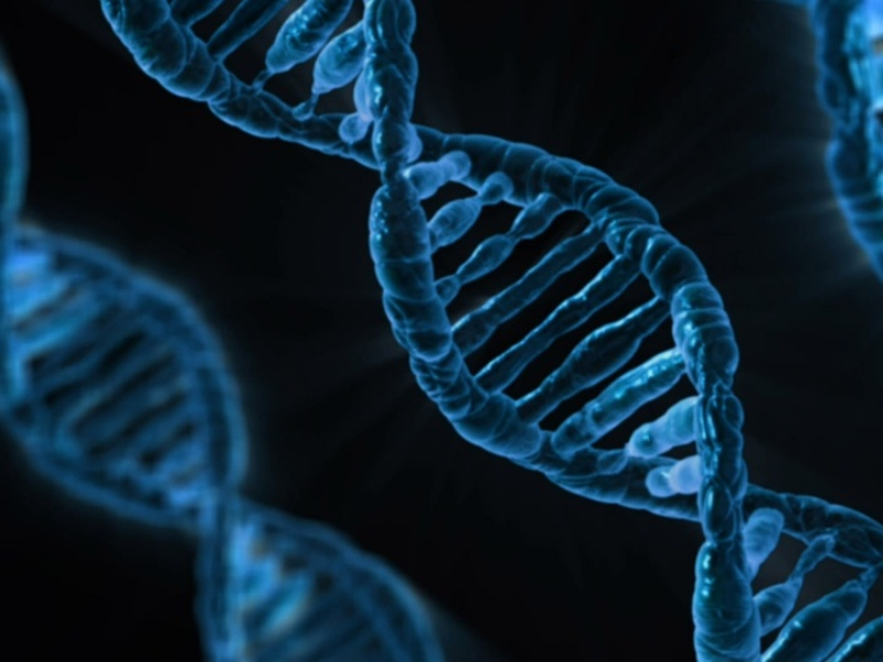 Biotecnologia in primo piano