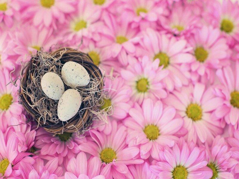 Uova Di Pasqua E Fiori