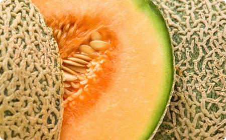 Melone Ph Sito Terredeltipico