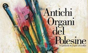 Antichi Organi Del Polesine 3