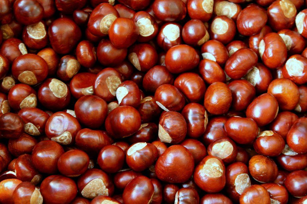 Chestnuts 4500209 1920