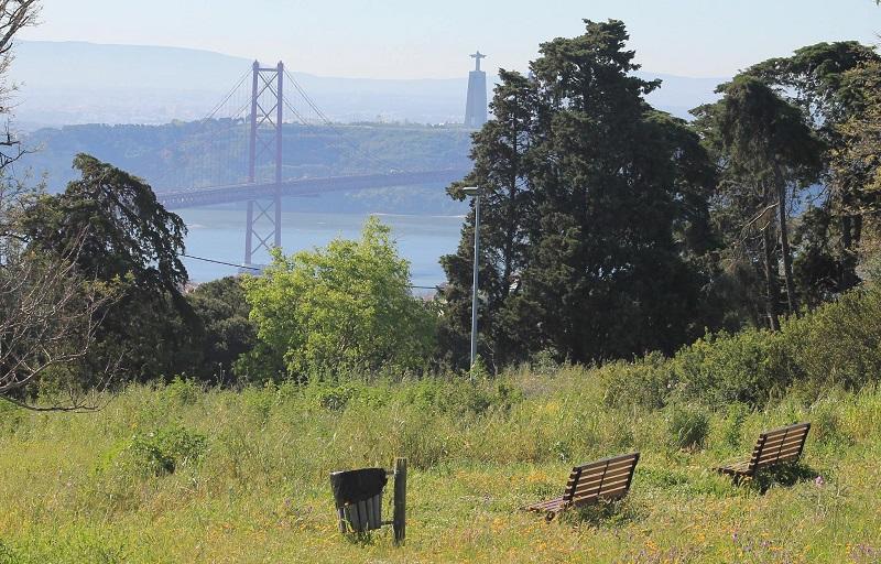 Parco Forestale Monsanto - Vista del Ponte