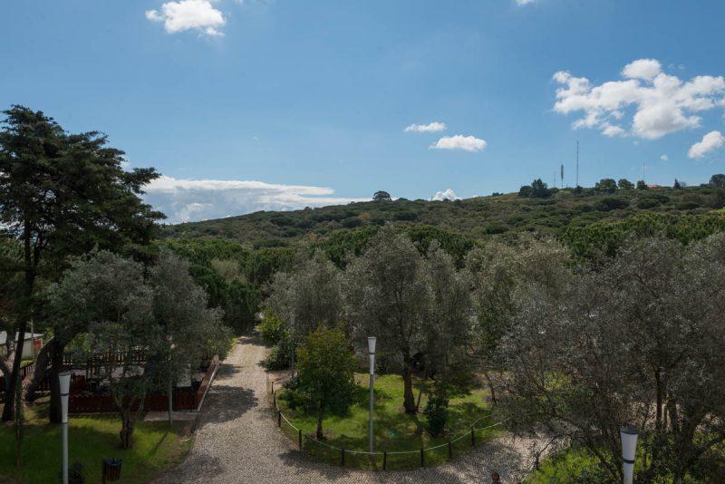 Panorama Del Parque Florestal De Monsanto