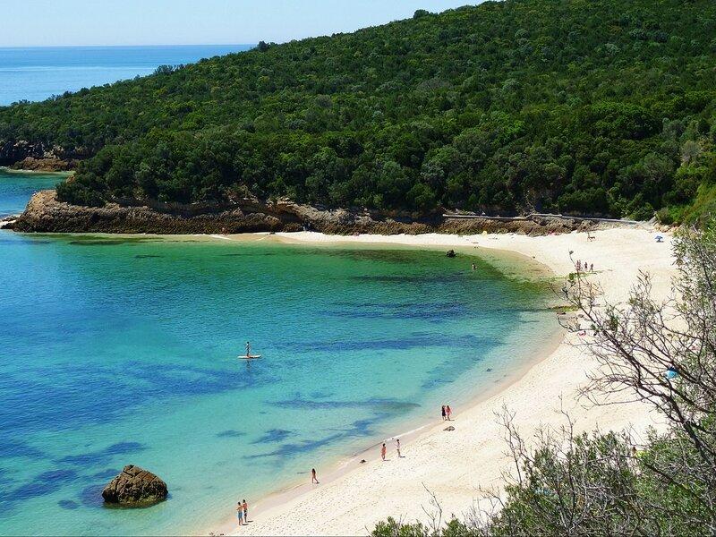 Rotta dei Vini: Praia De Galapos Arrabida
