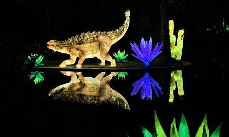 dinosauro e piante - Magical Garden