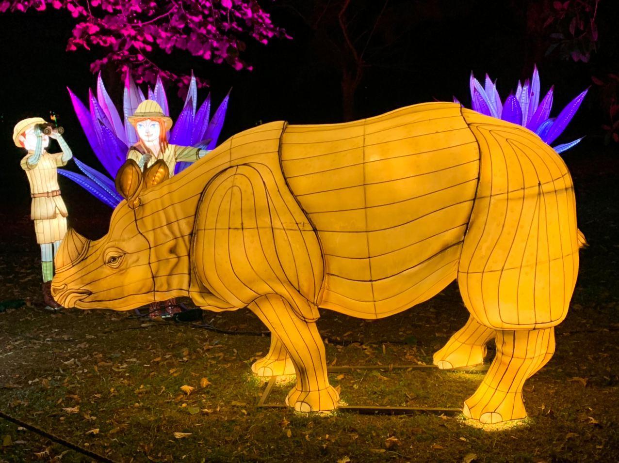 Rinoceronte, Lio e Lia - Magical Garden