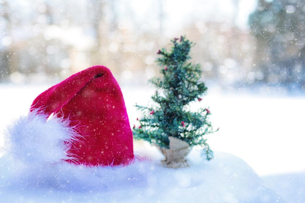 Gli alberi di Natale un albero in miniatura