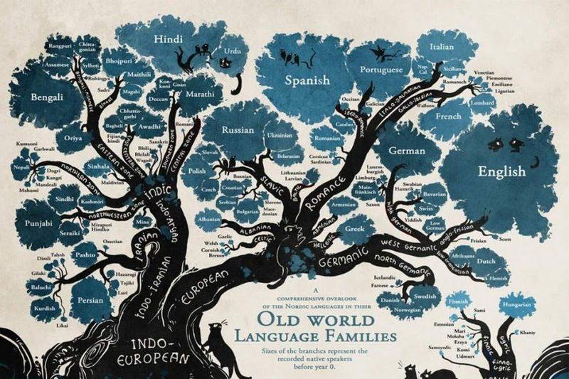 Origini Della Lingua Inglese- albero genealogico delle lingue indoeuropee