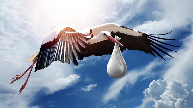 Royal Baby- volo della cicogna