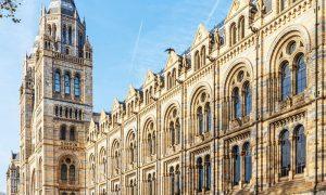 Natural History Museum. L'edificio