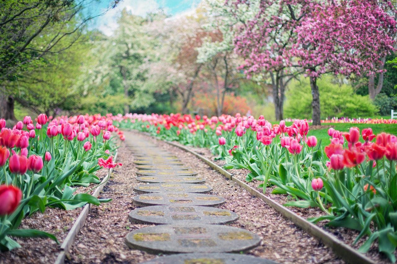 A Londra un corridoio di fiori lungo 11 km