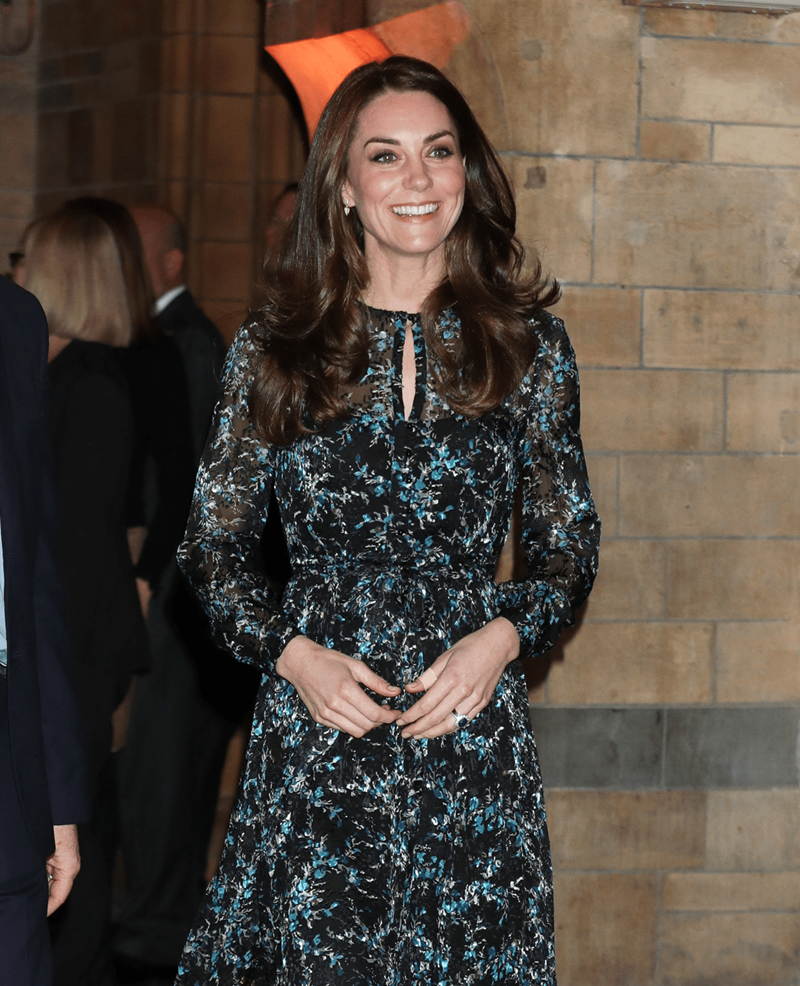 Kate Middleton - Kate In Lungo ad una serata di Gala