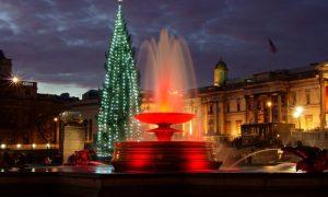 Il Natale a Londra - un maestoso albero di Natale a Londra