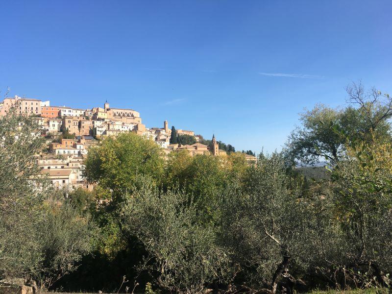 Katie: paesaggio di Loreto Aprutino paese, alberi
