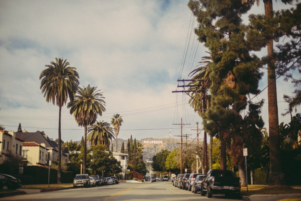Palme lungo un viale di Hollywood