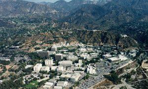 Cinzia Zuffarda - la sede in California