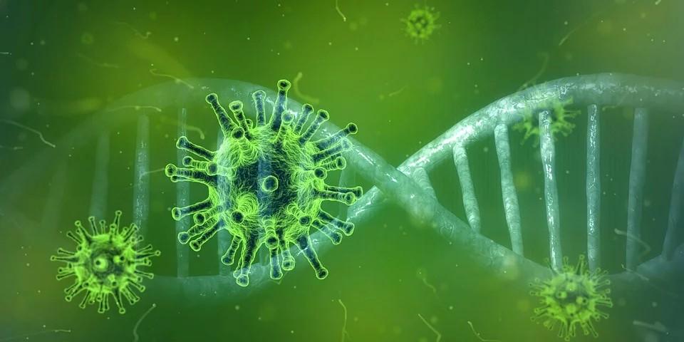 News per gli italiani in U.S.A. - raffigurazione di un virus