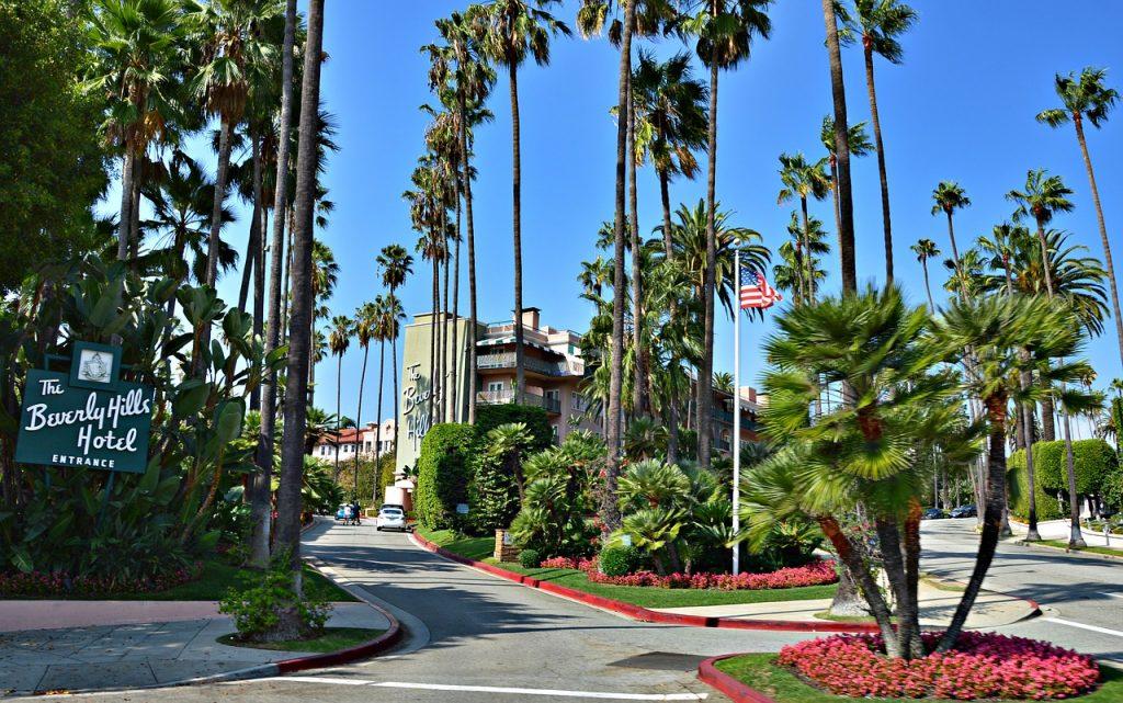 Palme lungo un viale di Beverly Hills