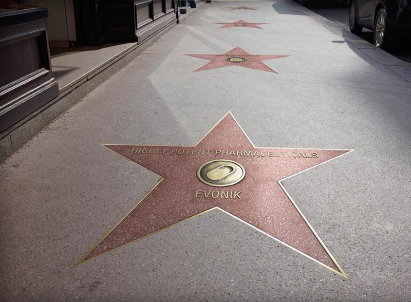 La Walk of Fame - Stelle Rosa sulla famosa strada delle star