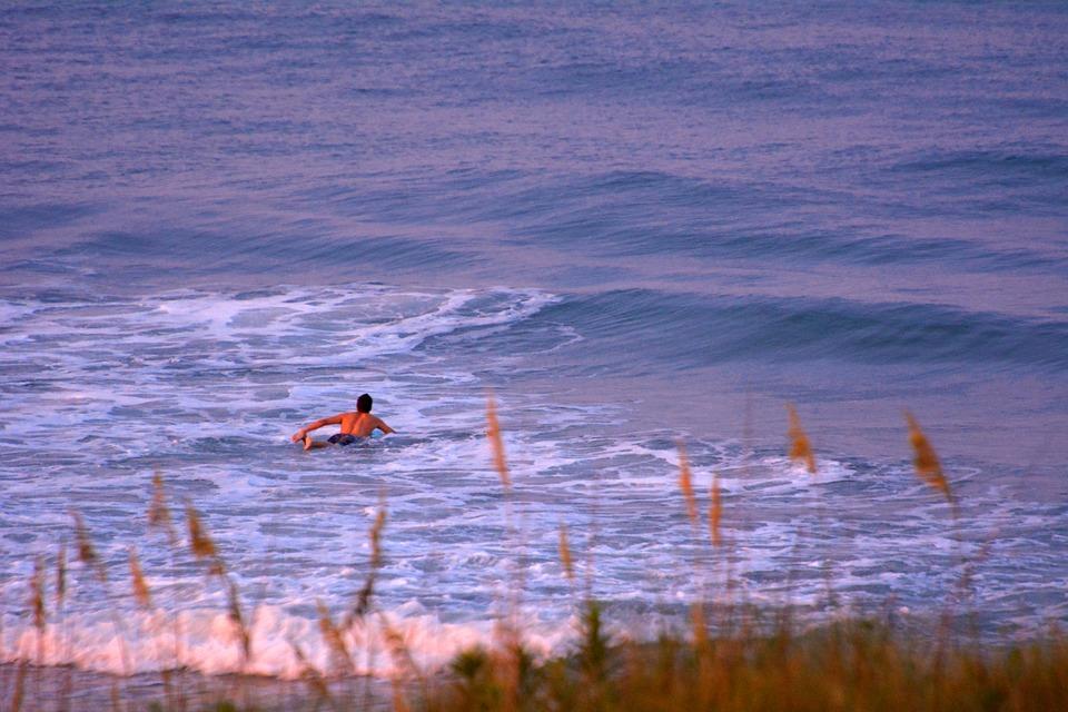 MAlibu - Surfista che nuota