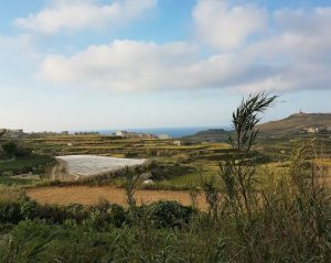 gozo isola rurale del mediterraneo