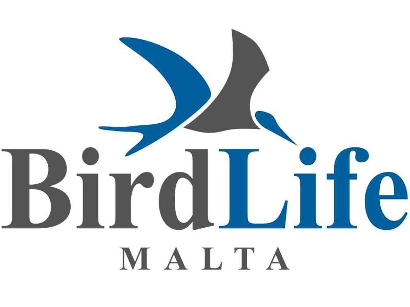 birdlife malta: logo