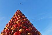 L'albero di natale a Valletta