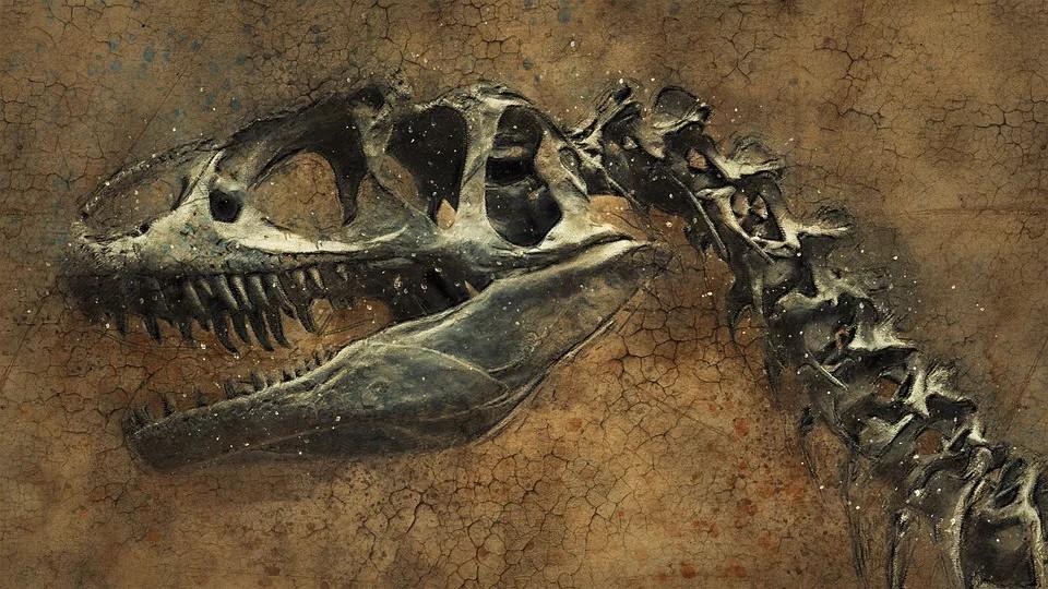 jurassic world - un fossile di tirannosauro