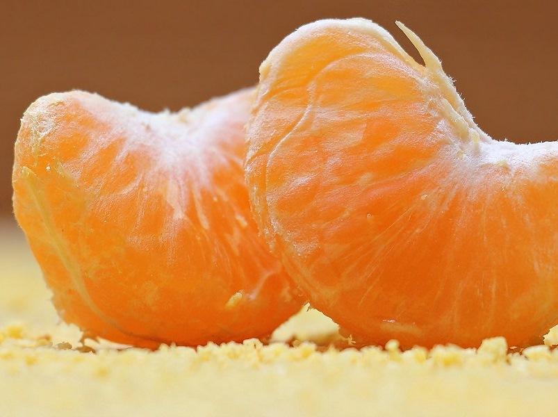 citrus festival 2020