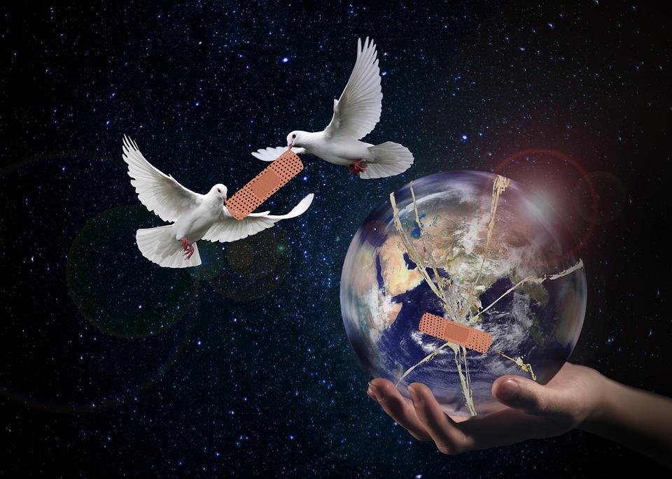 colomba mondo cerottato