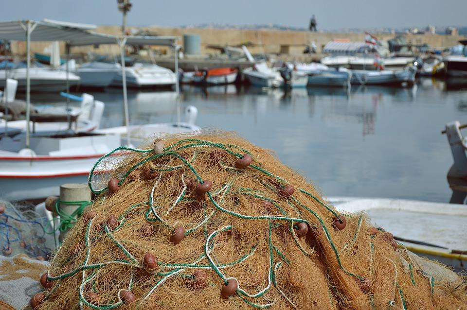 rete da pesca lampuki