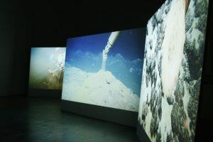 Blind Sensorium - Foto di una mostra
