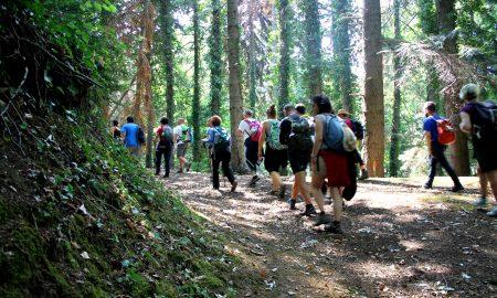 Netural Walk I Camminatori