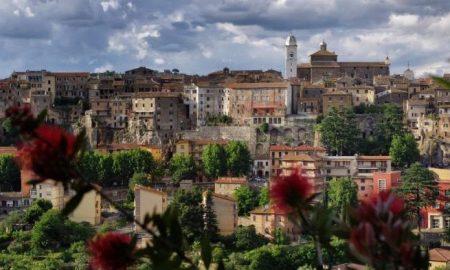 Cropped Orte Pura Bellezza .jpg
