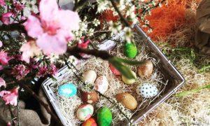 Uova di pasquarosa colorate