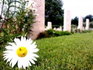 Il cimitero canadese con i caduti della Battaglia di Ortona